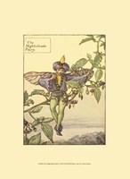 The Nightshade Fairy Fine Art Print