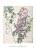 Small Postcard Wildflowers I Fine Art Print