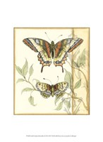 "Small Tandem Butterflies II by Jennifer Goldberger - 10"" x 13"" - $10.49"