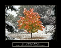 Endurance - Fall Tree Fine Art Print
