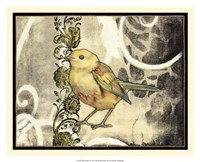Bird Song II Framed Print