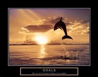 Goals - Dolphins Framed Print