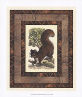 Rustic Squirrel Fine Art Print