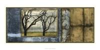 """Tandem Trees IV by Jennifer Goldberger - 35"""" x 16"""""""