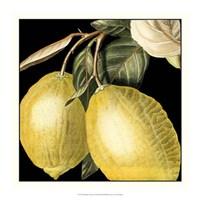 Dramatic Lemon Framed Print