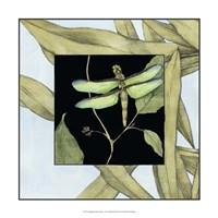 "Dragonfly Inset III by Jennifer Goldberger - 17"" x 17"" - $24.99"