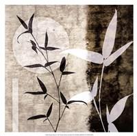 "Bamboo Moon II by Christine Zalewski - 17"" x 17"""