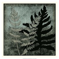 "Illuminated Ferns I by Megan Meagher - 18"" x 18"""