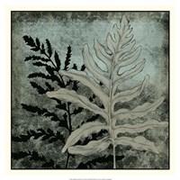 "Illuminated Ferns II by Megan Meagher - 18"" x 18"""