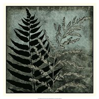 "Illuminated Ferns III by Megan Meagher - 18"" x 18"""