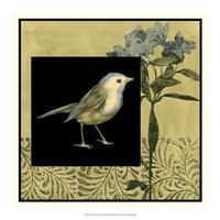 "Bird Fantasy I by Jennifer Goldberger - 18"" x 18"""