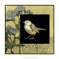 "Bird Fantasy II by Jennifer Goldberger - 18"" x 18"""