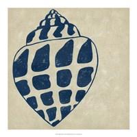"""Indigo Shell I by Chariklia Zarris - 18"""" x 18"""""""