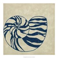 """Indigo Shell II by Chariklia Zarris - 18"""" x 18"""""""