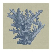 "Chambray Coral I by Vision Studio - 18"" x 18"""