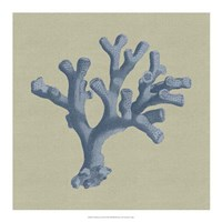 "Chambray Coral II by Vision Studio - 18"" x 18"""