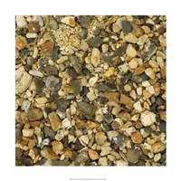 """Nature's Textures II by Vision Studio - 18"""" x 18"""" - $18.99"""