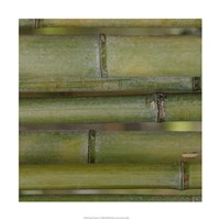 """Nature's Textures V by Vision Studio - 18"""" x 18"""" - $18.99"""