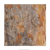 """Nature's Textures VII by Vision Studio - 18"""" x 18"""" - $18.99"""