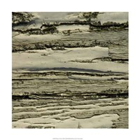 """Nature's Textures VIII by Vision Studio - 18"""" x 18"""" - $18.99"""