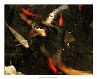Goldfish Pond II Fine Art Print