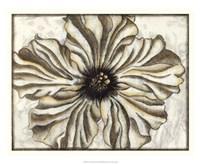 """Fresco Flowerhead I by Nancy Slocum - 22"""" x 18"""""""