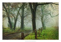 "Morning on Sparks Lane IV by Danny Head - 26"" x 18"""