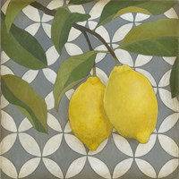 Fruit and Pattern I Fine Art Print