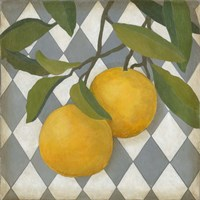 Fruit and Pattern IV Fine Art Print