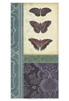 """Butterfly Brocade I by Vision Studio - 13"""" x 19"""""""