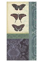 """Butterfly Brocade II by Vision Studio - 13"""" x 19"""""""