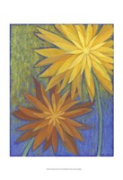 "Floral Burst II by Megan Meagher - 13"" x 19"""