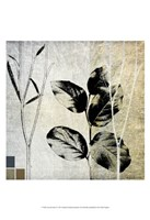 "Leaves & Stems I by Catherine Kohnke - 13"" x 19"""