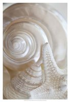 Pearlesce III Fine Art Print