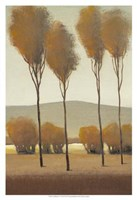 """Tall Birches I by Timothy O'Toole - 13"""" x 19"""" - $12.99"""