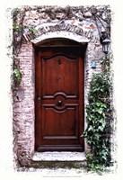 Doors of Europe II Framed Print