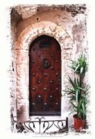 Doors of Europe III Framed Print