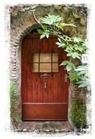 Doors of Europe XV Fine Art Print