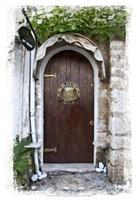 Doors of Europe XIX Fine Art Print