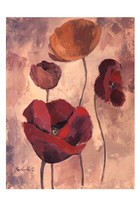 "Textured Poppies I by Marietta Cohen - 13"" x 19"""
