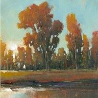 Late Afternoon Fall by Timothy O'Toole - various sizes
