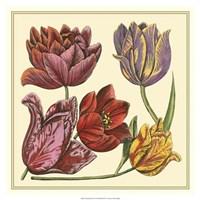 "Floral Spray II by Vision Studio - 19"" x 19"""