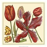 """Floral Spray V by Vision Studio - 19"""" x 19"""""""