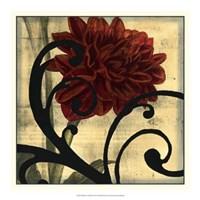 "Dahlias & Scrolls III by Jennifer Goldberger - 19"" x 19"" - $24.99"