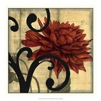 "Dahlias & Scrolls IV by Jennifer Goldberger - 19"" x 19"" - $24.99"