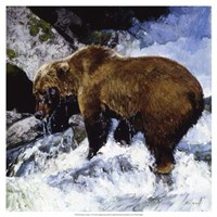 Katmai Cascade Fine Art Print