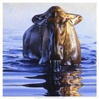 """Dreadnought by Julie Chapman - 19"""" x 19"""" - $27.99"""
