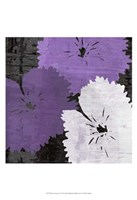 """Bloomer Squares X by James Burghardt - 19"""" x 19"""""""