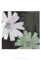 Bloomer Squares XVIII Fine Art Print
