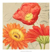 """19"""" x 19"""" Daisy Pictures"""